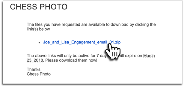Download Link in Email