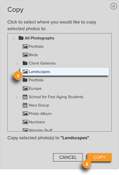 Copy Photos to Another Gallery - Choose Gallery