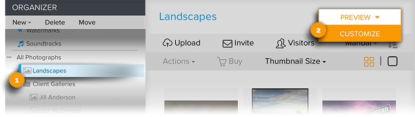 Stay on Gallery then go to Customize Visitor View