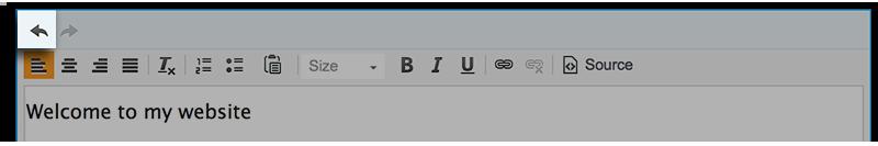 Text Box Tools Undo